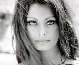 sophia loren, actress, and black and white image