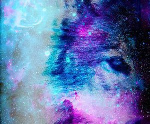 galaxy, wolf, and animal image