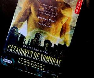 the mortal instruments, libro, and cassandra clare image