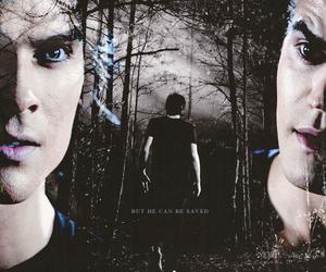 the vampire diaries, brothers, and paul wesley image