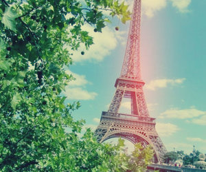 paris, beautiful, and tree image