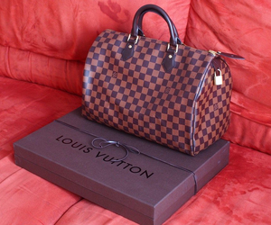 fashion, finland, and LV image