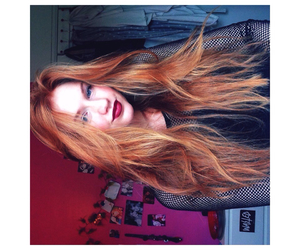ginger, longhair, and mac image