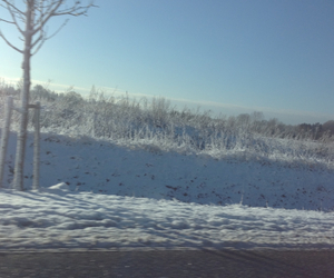beautiful, cold, and driving image