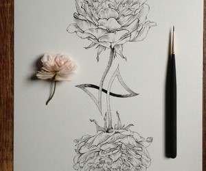 art, disegni, and flower image