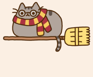 harry potter, cat, and cute image