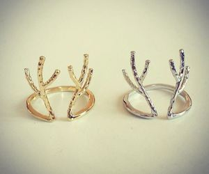antlers, rings, and gold image