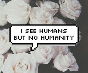 humanity, humans, and flowers image