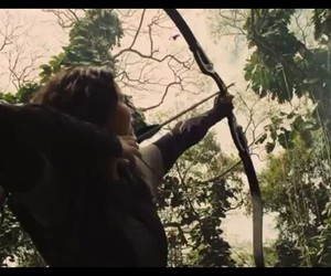 rainforest, trees, and catching fire image