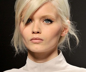 model and Abbey Lee Kershaw image
