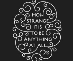 alice in wonderland, qoute, and strange image
