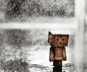 rain, sad, and danbo image