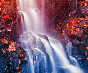 waterfall, water, and autumn image