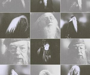 dumbledore, harry potter, and hp image