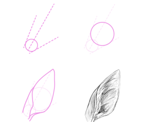 deer, ear, and how to draw image