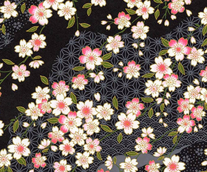 flowers, wallpaper, and 5 image
