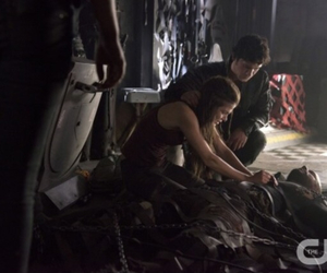the cw, the 100, and bellamy blake image