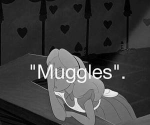 muggles, harry potter, and alice in wonderland image