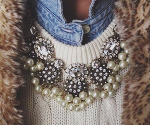 clothes, fur, and jewelry image