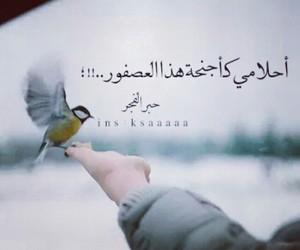 حب, قلبي, and كلام image