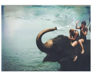 elephant, fun, and water image