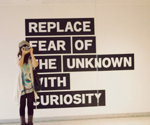 fear, quote, and curiosity image