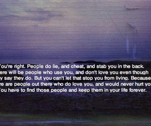 quote, life, and lies image