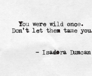 quotes, wild, and text image