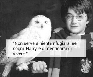 daniel radcliffe, harry potter, and sogni image