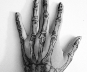 hand and skeleton image