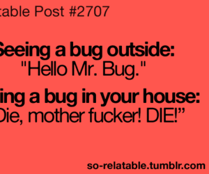 bug, funny, and true image