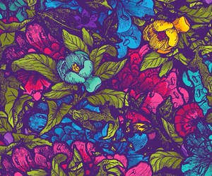 butterfly, colorful, and wallpaper image