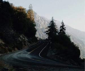 road, nature, and indie image