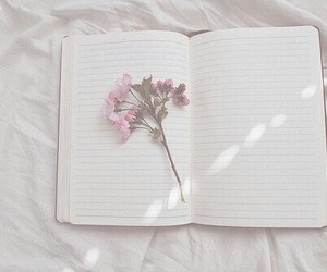 cool, flower, and notebook image