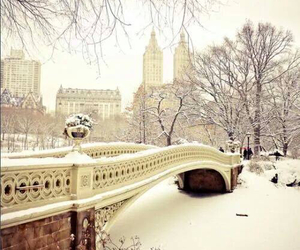 bridge, carpe diem, and snow image