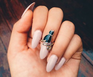 nails, ring, and cat image