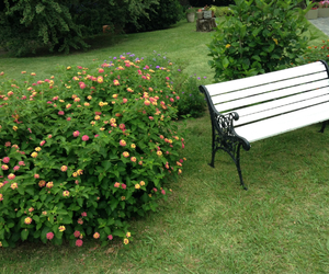 banco, bench, and flowers image