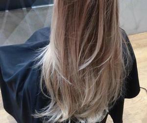 hair, long, and flamboyage image