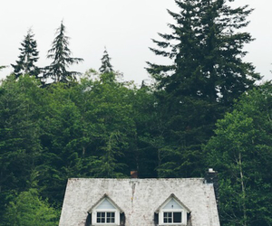 house, forest, and nature image