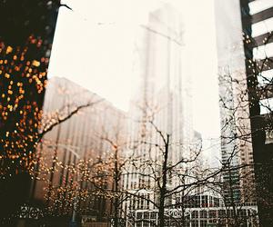light, city, and tree image
