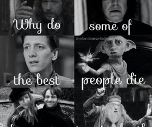 always, dobby, and Fred image