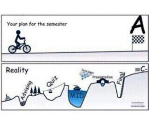 life, reality, and plan image