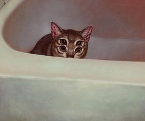 cat, eyes, and creepy image