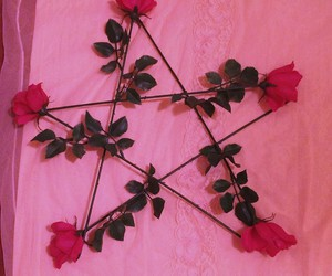 flower, flowers, and pentagram image