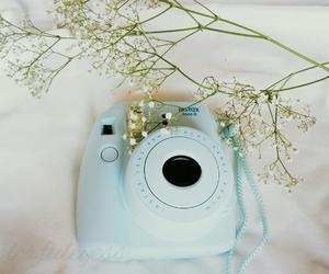 babys breath, blue, and flower image