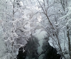 peace, river, and snow image