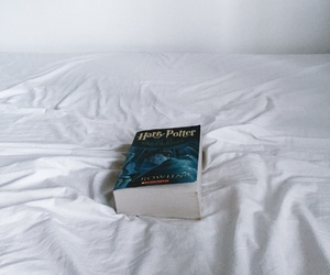 book, harry potter, and literature image