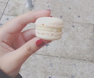 food, macarons, and peppermint image