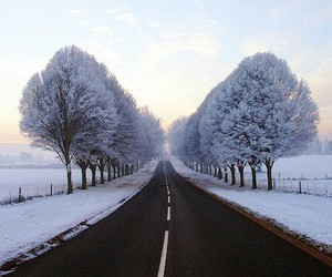 amazing, road, and cold image