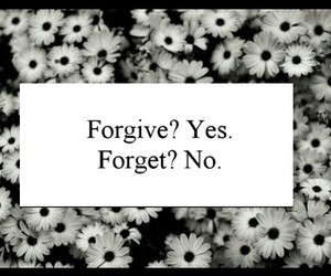 no, yes, and forgive @forget image